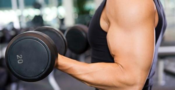 workout programs